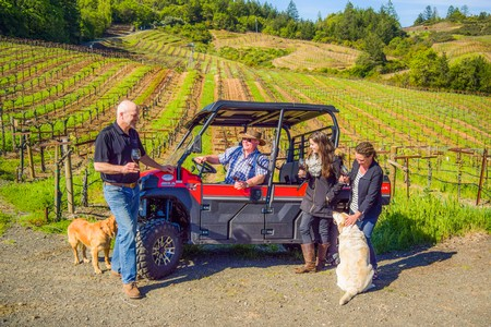 All-Terrain Vineyard Experience Gift Certificate
